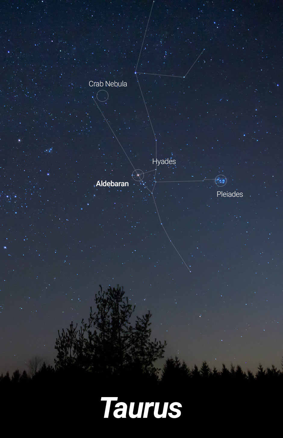 Starwatch: prepare to track down a young crescent moon