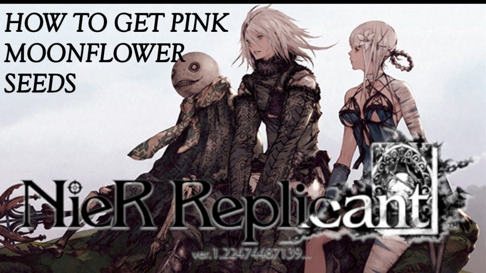 Nier Replicant: How to Find Pink Moonflower Seeds Location and Latest Updates