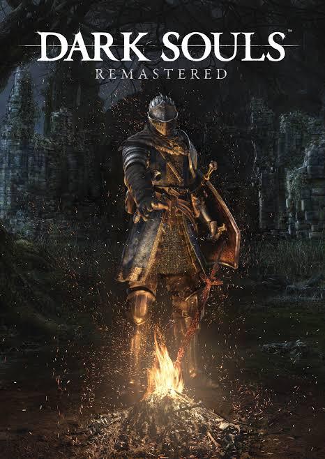 Dark Souls Cover Armor