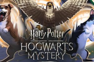 Animagus Harry Potter Game