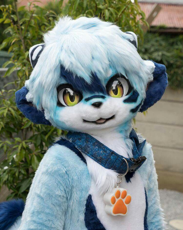 Furry Anime: The Growing Anime Subculture